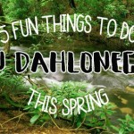 5 Things to do in Dahlonega this Spring